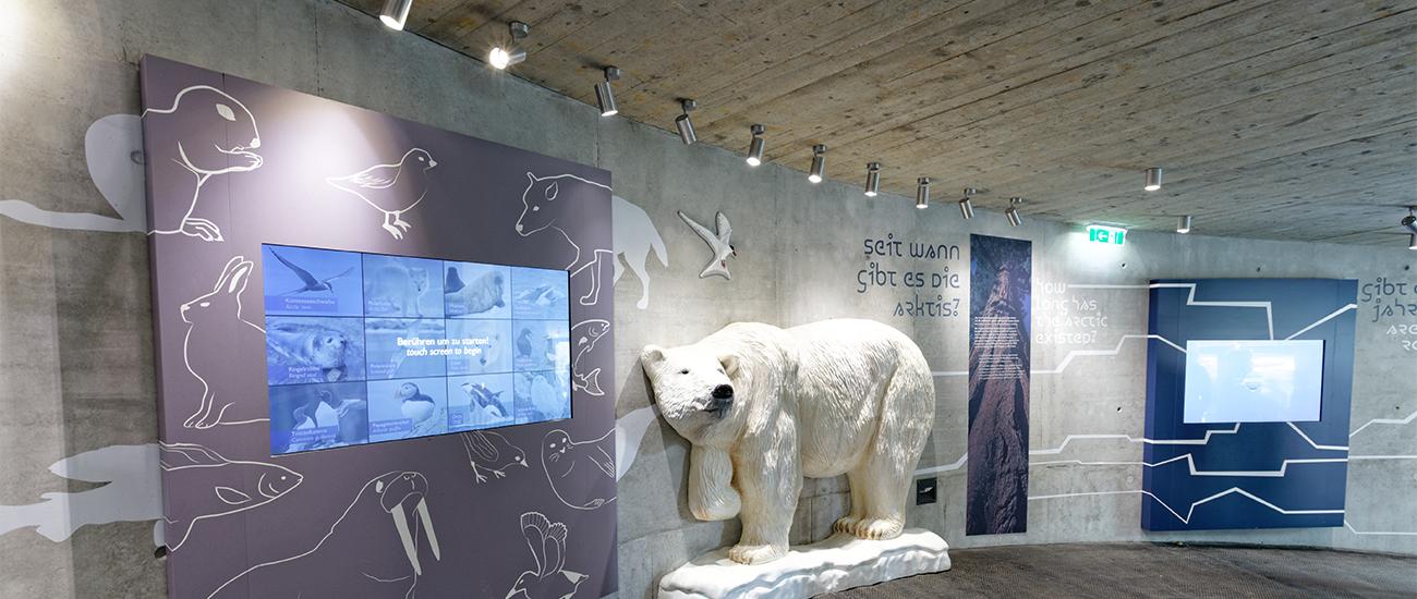 Polardom Tiergarten Schönbrunn