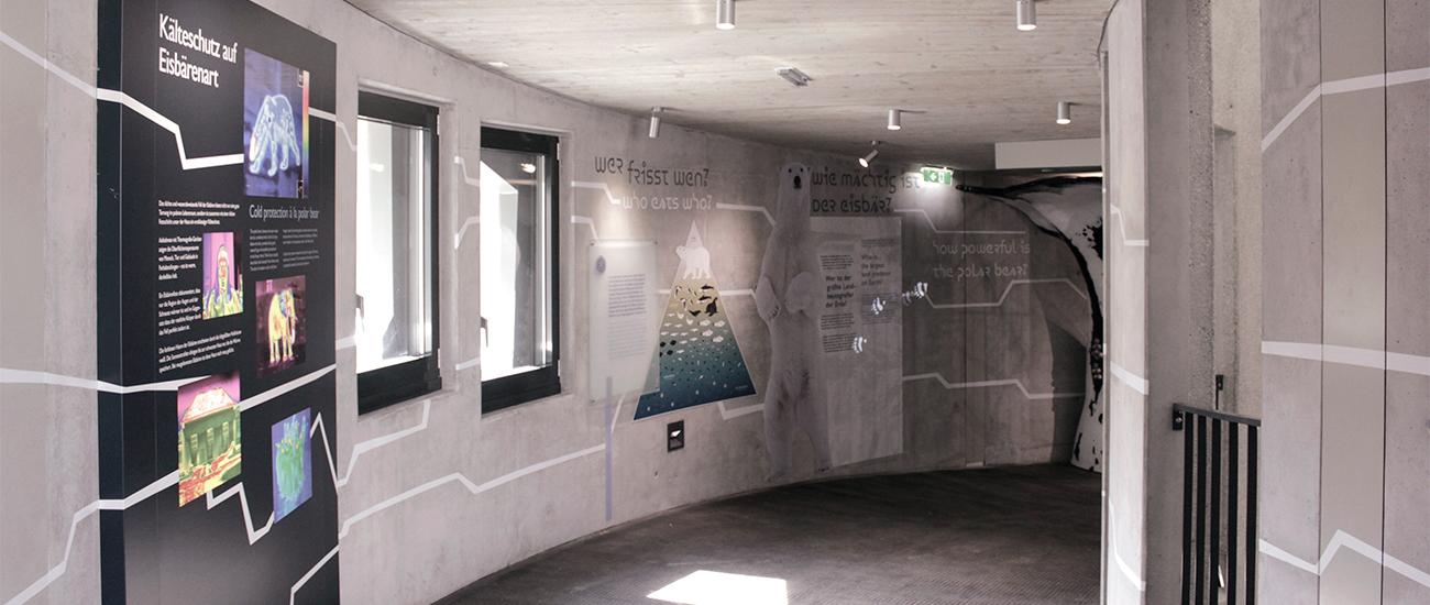 studio-kudlich_Polardom-Tiergarten-Schönbrunn__MG_8845